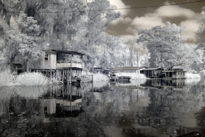 Swamp-Shacks
