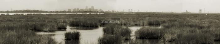 Urban-Swamp