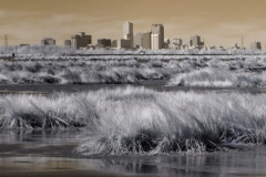IR-Urban-Swamp